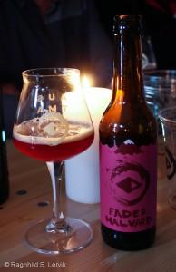 austmann_bryggeribesok-27