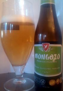 MongozoPilsAML