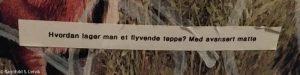 Tekst fra doveggen: Hvordan lager man et flyvende teppe? Med avansert matte.